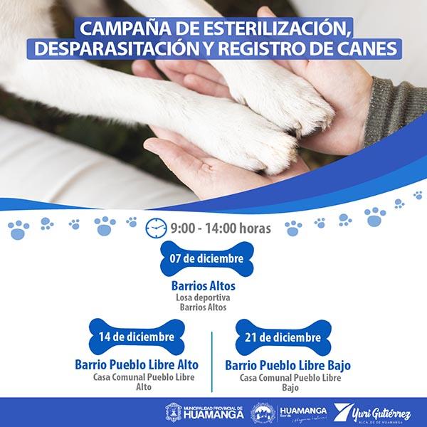 MPH realizará desparasitación y esterilización de canes
